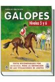 CURSO DE EQUITACIÓN. GALOPES NIVELES 5 Y 6